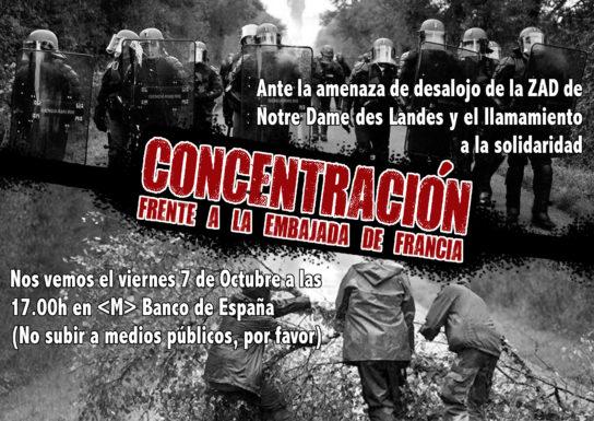 concentracion-zad